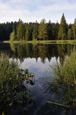 Franches Montagnes, Lac de la Gruère (JU)