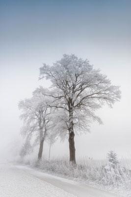Region Beromünster / Bäch; 2. Januar 2017