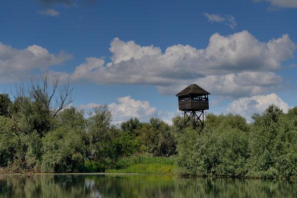 Landschaft Donaudelta; Juni 2014