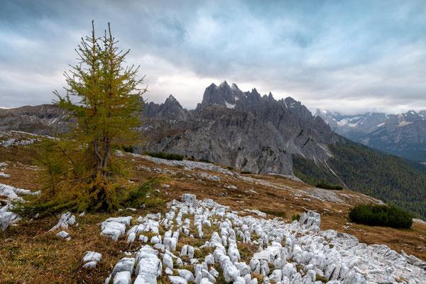 Monte Campedelle; Dolomiten; 8.10.2018