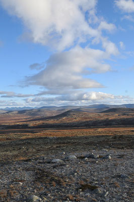 Landschaft im Dovrefjell