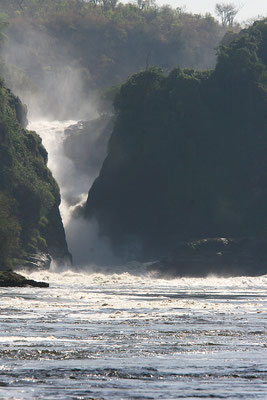 Murchison Fälle (Nil)