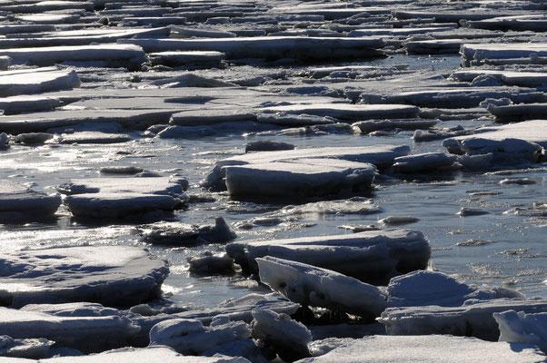 Eisshollen im Fjord