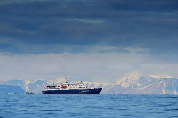 Vor dem Westufer der Spitzbergen-Inseln; 3, Juli 2015