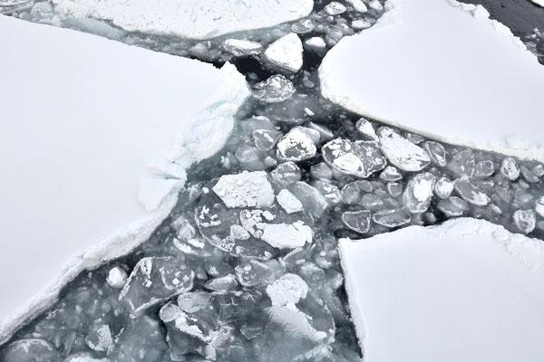 Unser MS Origo kann Eisschichten bis zu einer gewissen Stärke brechen