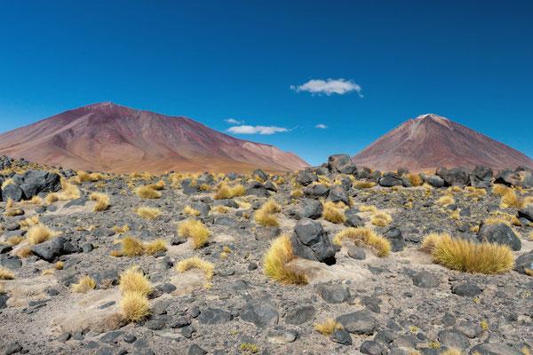 Landschaft vor der Grünen Lagune mit Vulkan Licancabur im Hintergrund