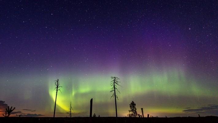 Polarlicht Viiksimo; 7. September 2019; 64. Breitengrad
