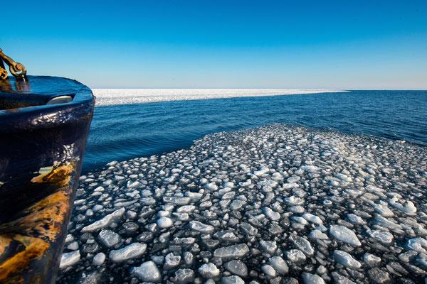 Von Longyearbyen startend rückt unsere 12er Gruppe mit der 'Origo' Richtung Drifteis im Polarmeer vor; 14.9.2017