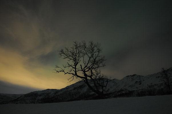 Landschaft in der Nacht