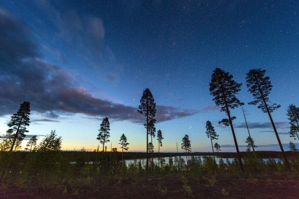 Der boreale Wald Finnlands legt sich schlafen