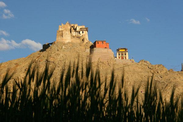 Kloster Tsemo, Leh