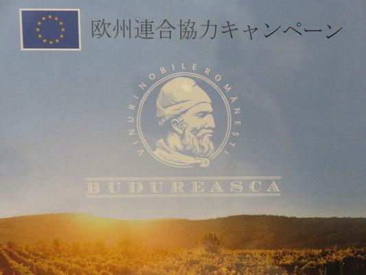 ルーマニア「EUキャンペーン」