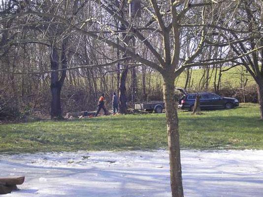 Durch das Hochwasser hat sich auch hier eine Eisfläche gebildet.