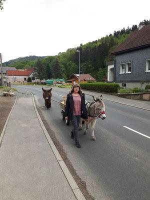 Avec Agnes et Trulla, une ânesse commune