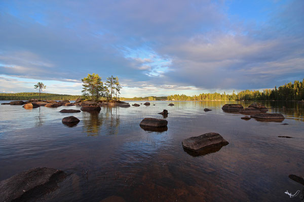 Halvarsnoren (Schweden)