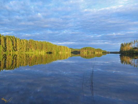 Svartälven (Schweden)