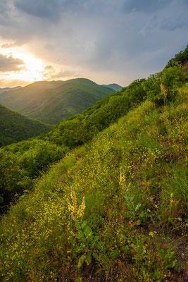 Low mountain sunset - Mtskheta-Mtianeti