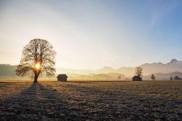 Morgensonne in Gürbetal