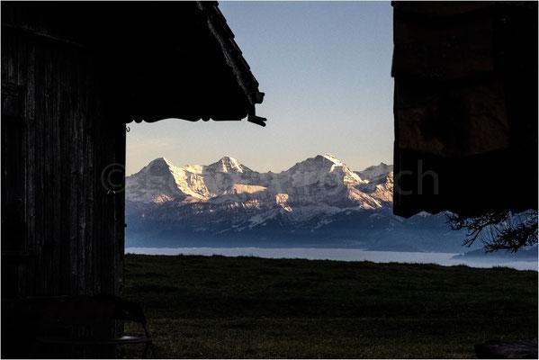 Herbst, es wird rasch dunkel auf der Schattenseite. Burgistein mit Blick auf Eiger Mönch Jungfrau
