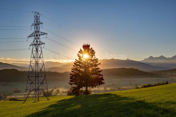 ;-)) Sonnenenergie wird via der Fichte direkt in die Hochspannungsleitung eingespiesen..... eeeh... a soweit sind wir leider noch nicht!