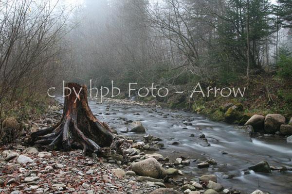 Naturpark Gantrisch, die Biberze, ein kleinder Bach, Langzeitbelichtung