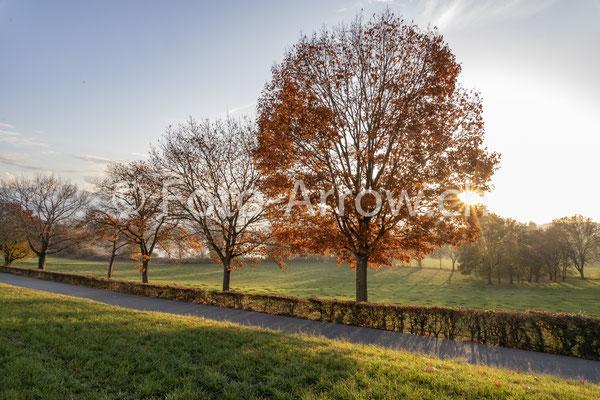Naturpark Gantrisch, Sonnenuntergang, Gerzensee