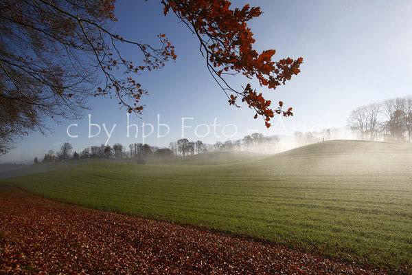 Herbst mit Nebelschleier, Längenberg, Kanton Bern