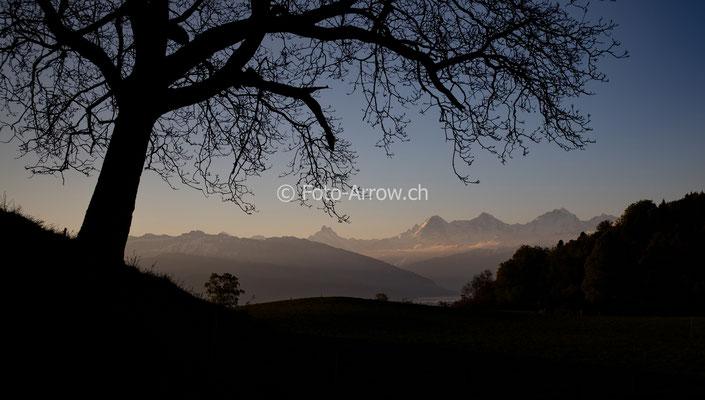 Morgengrauen über dem Thunersee