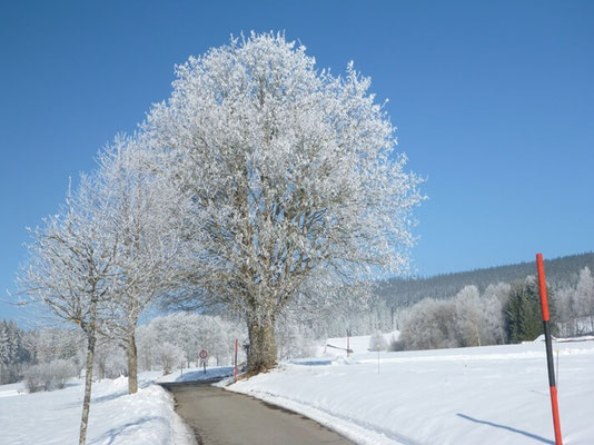 Winterferien Skiurlaub Hundelbach