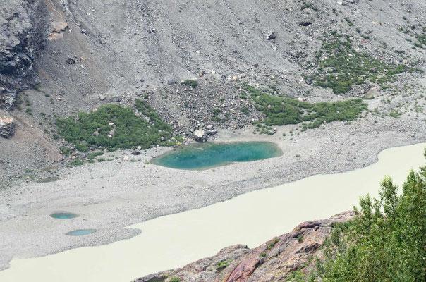 die vom Salmon Glacier liegengeblieben sind