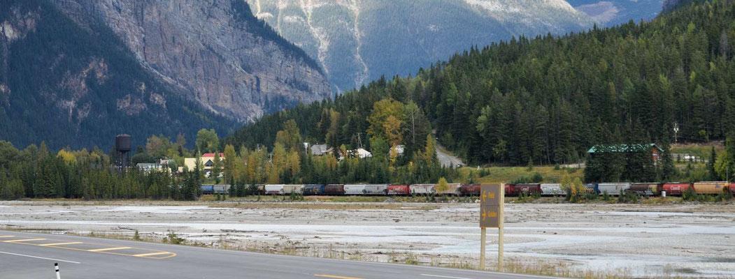 Yoho NP, lange Eisenbahnzüge warten auf die Weiterfahrt über den Yoho Pass