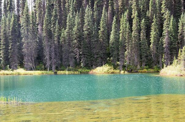 Jede Menge Seen und ...