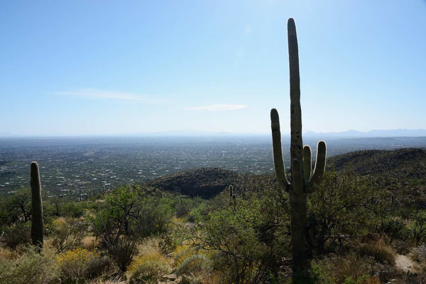 Allet wat de siehst is - ne nich Oberhausen - Tucson
