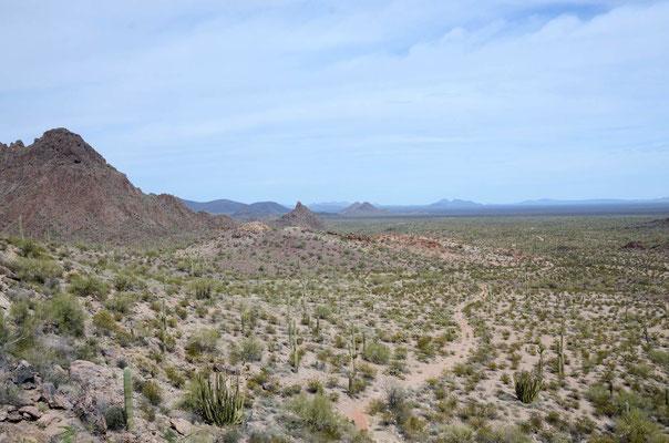 Eine Wanderung zu einer versteckten Wasserstelle in der Wüste  -  Dripping Springs