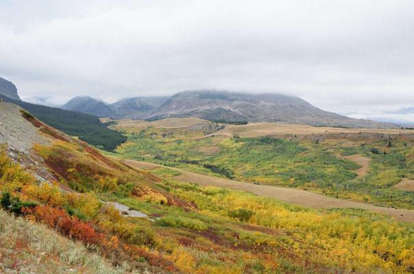 Glacier NP, am östlichen Rand geht's in die Prairie