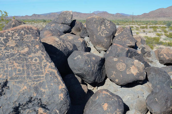 Petroglyphen am Campground