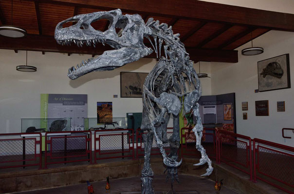 Bei der Cleveland-Loyd Dinosaur Quarry