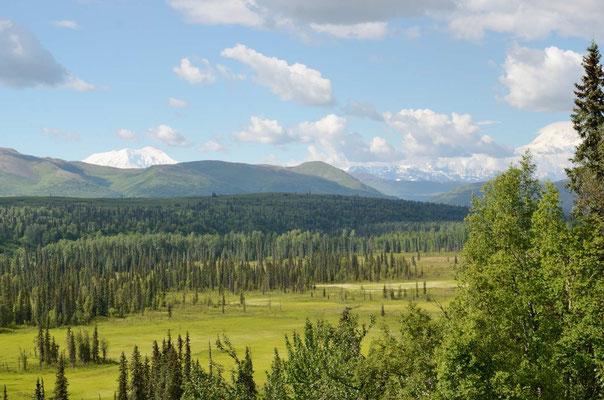 Wieder mal eine tolles Panorame vom Schafplatz aus
