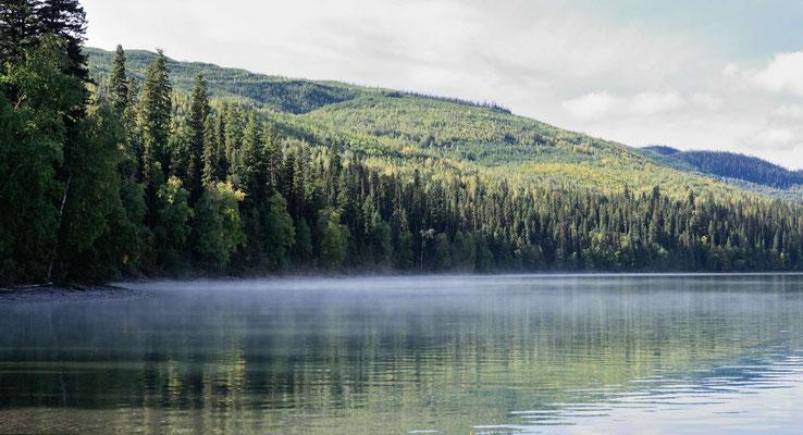 Morgens dampft der See