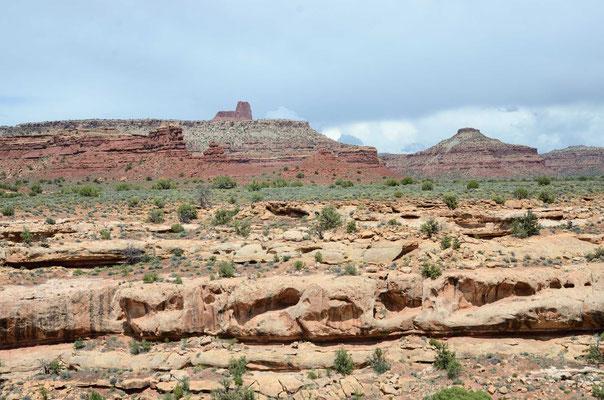 Am White Canyon gehts 50 Km entlang bis zum Natural Bridges National Monument