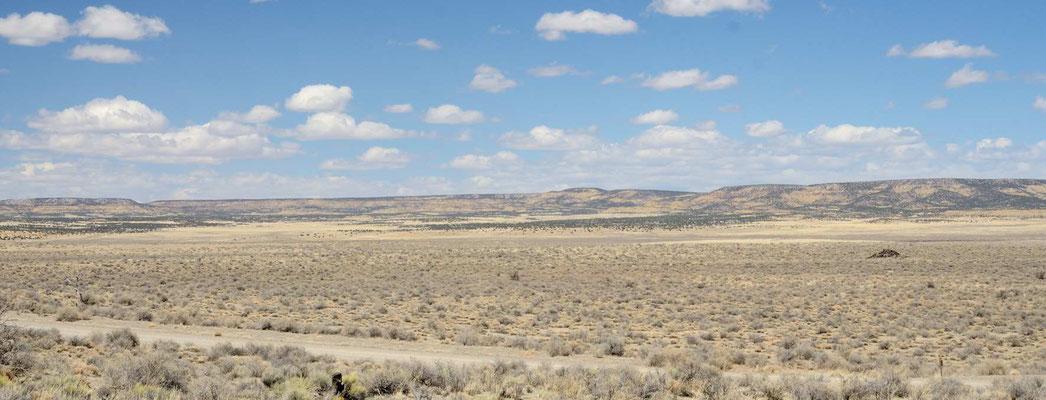 Und wieder Ranchland so weit das Auge reicht.