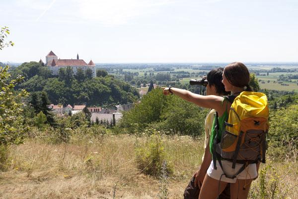 Blick von der Lerchenhaube auf das Schloss Wörth, Foto: Stefan Gruber