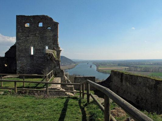 Burgruine Donaustauf, Foto: Michael Körner