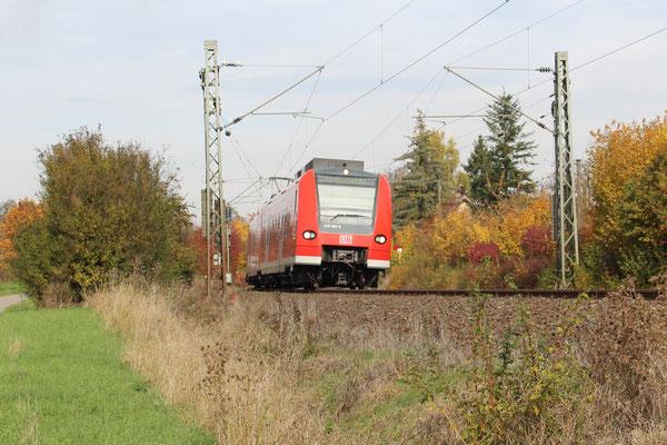 28.11.2016 RE 19087 in Richtung Rottweil bzw. Eutingen, kurz vor Herrenberg