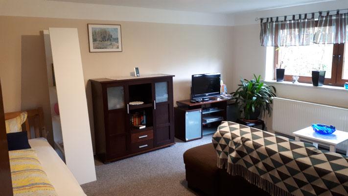 Wohn-/Schlafzimmer mit WLAN, TV und Blue Ray-Player