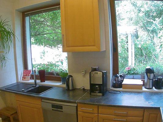 Küche mit Ausblick in den Garten und das Pavillon