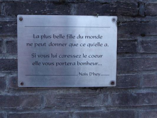 Antoing - een wijs gedicht van Naïs D'hey