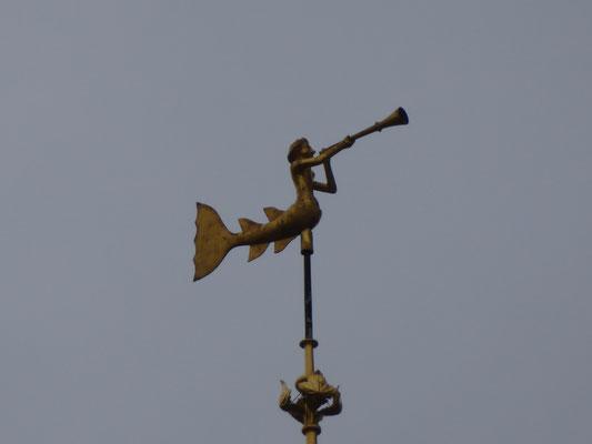 Tournai - Belfort - Meermin met hoorn.