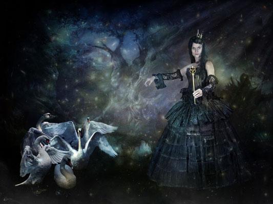 Madame Odile und ihr zauberhaftes Schwanenballett