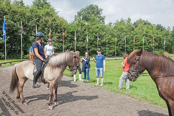 Entrainement allures. Photo Krijn Buijtelaar